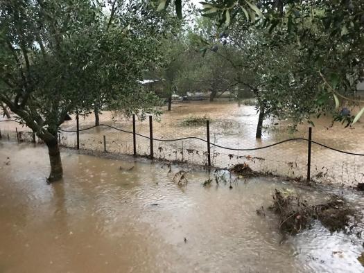 Κατέστρεψε και καλλιέργειες η καταιγίδα στην περιοχή Μεσολογγίου