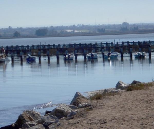 """""""Σπείρα"""" από το Μεσολόγγι άπλωσε τα δίχτυα της στην λιμνοθάλασσα Κοτυχίου"""