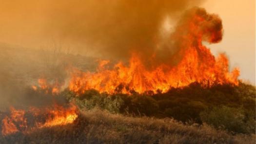 Οι υψηλές θερμοκρασίες προκάλεσαν πολλές πυρκαγιές